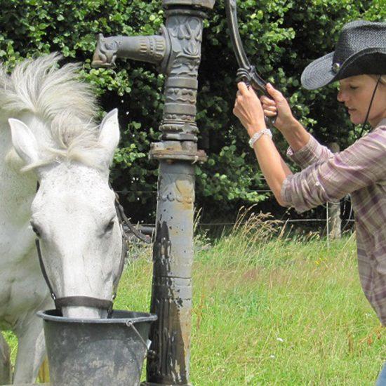 Woche mit eigenem Pferd
